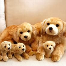 golden retriever dog plush toy with squeaker