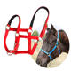 PVC Horse Halter Buckles,Horse Equipment Equestrian Riding Accessories