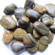 Stripe polished natural pebbles for landscaping