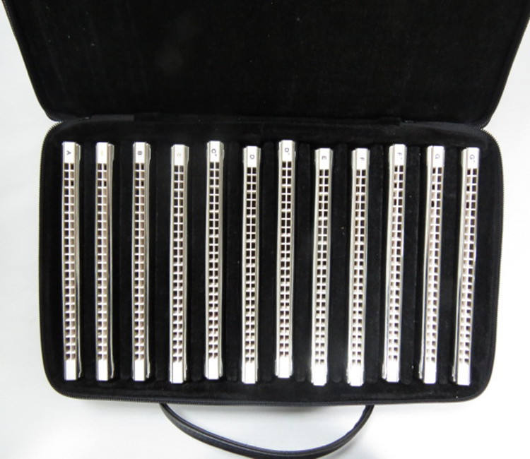 T2406S EASTTOP 24 hole professional 12 key set tremolo harmonica in canvas box