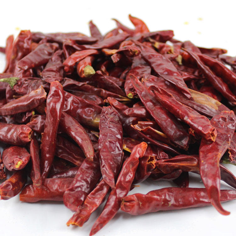 Whole sweet paprika pods dried red chili spicy chilli