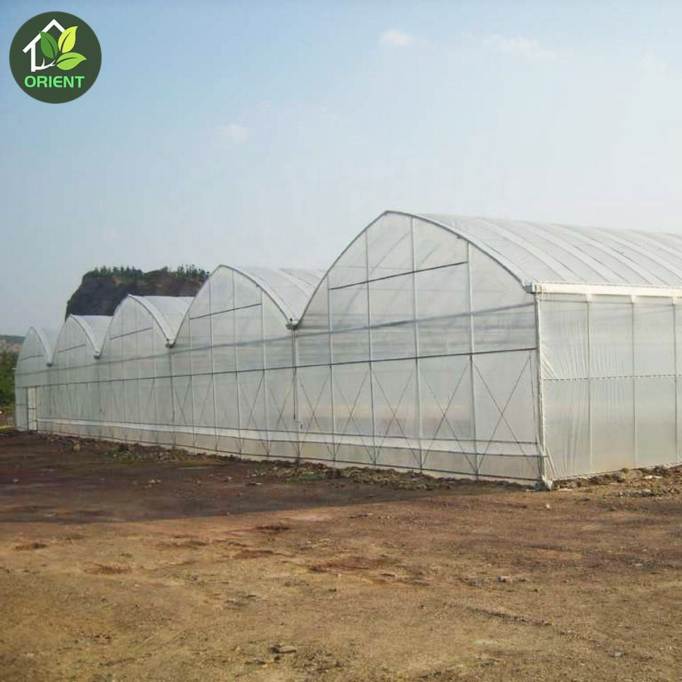 Tropical greenhouse plastic covering farm used for sale