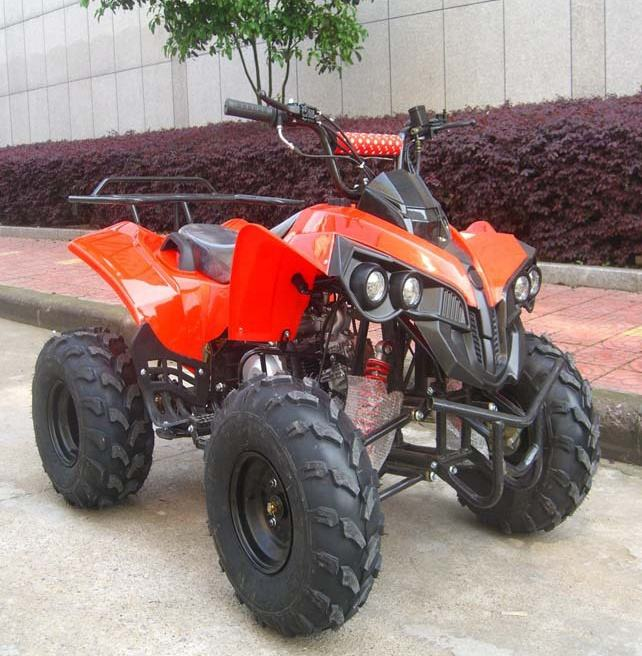 110cc/125cc Air Cncen Mini ATV Quad Bike