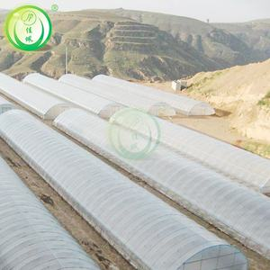 Tunnel Film Greenhouses China
