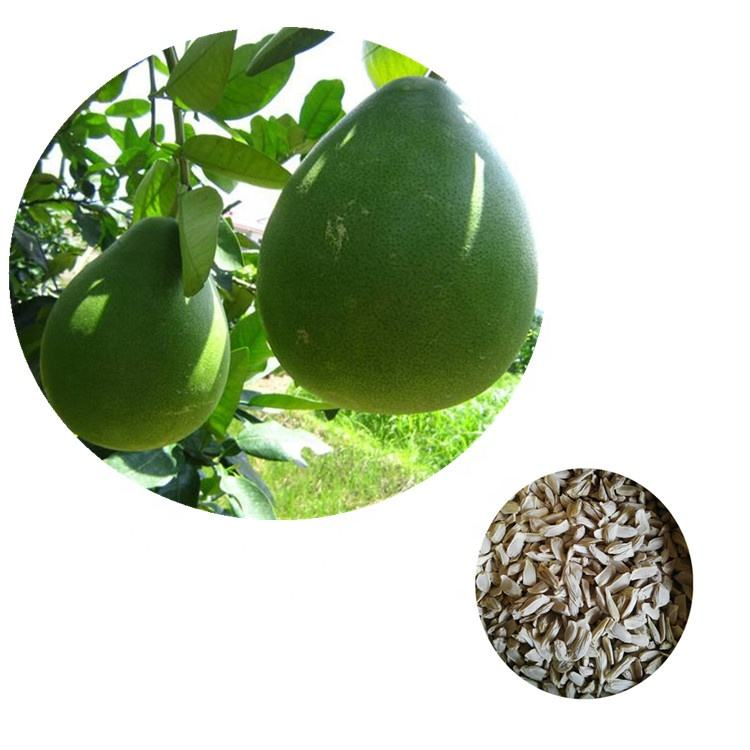 High Quality Grapefruit tree seeds/pomelo tree seeds for planting