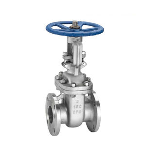 COVNA DN150 6 inch ANSI Class 150 Rising Stem CF8M Stainless Steel Handwheel Flanged Gate Valve