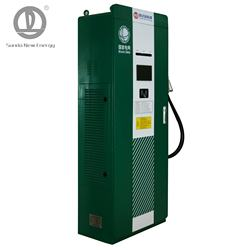 DC 100KW Single Gun Double Gun EV Charging Station EV Charging Pile  Fast Charging