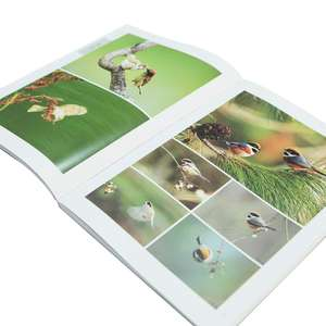 Custom Full Color Softcover Book Printing Photo Album of Birds Book