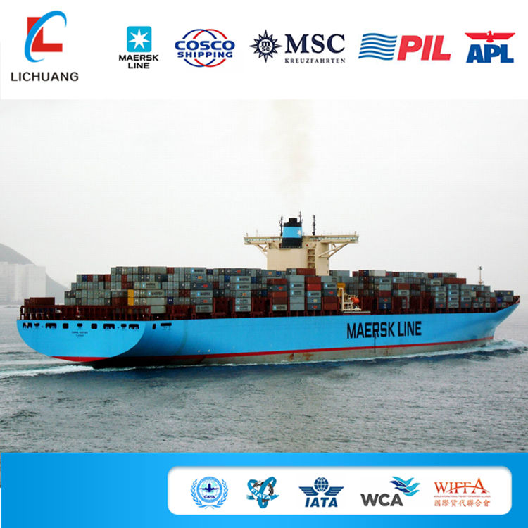 best international ocean freight from shanghai to Miami sea shipping