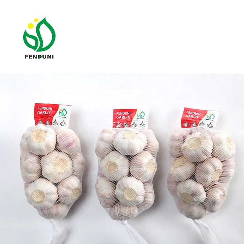 Supply Fenduni Garlic - JINING FENDUNI FOODSTUFF CO.,LTD