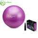 Zhensheng PVC Yoga Gym Ball Exercise Fitness Balance Ball
