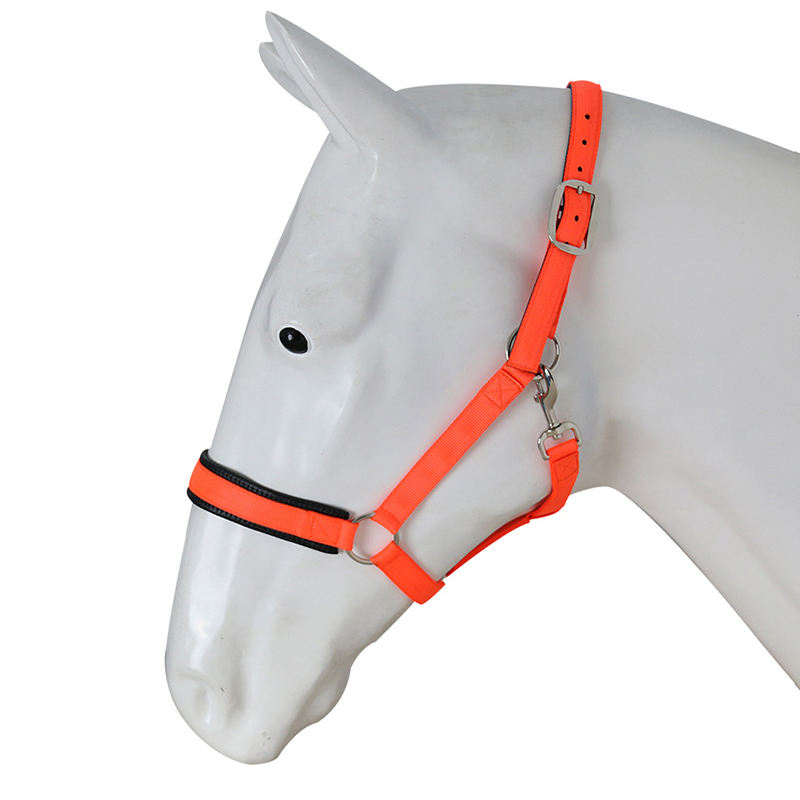 Equestrian Fabric Halter,Wholesale Horse Sized Nylon Horse Halter Manufacturer
