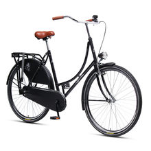 Retro City Touring Bicycle With  Black Leather Skirt