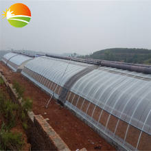 excellent quality mini greenhouse small tunnel greenhouse