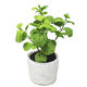Exceptional artificial greenery mint concrete pot home table green bonsai small vase flower pots flower artificial plant in pot