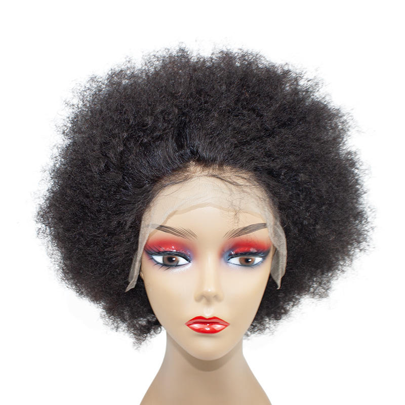 Morein hot selling High density Brazilian human hair kinky curly afro wigs for black women
