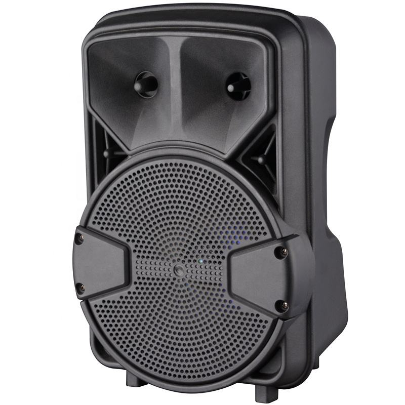 2019 New Trending Wholesale Price Portable 8 Inch Super Bass Subwoofer Speaker