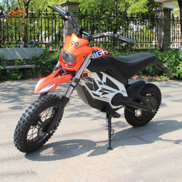 Wuxi Factory Provide Directly 48v 2500w Electric Dirt Bike for Man