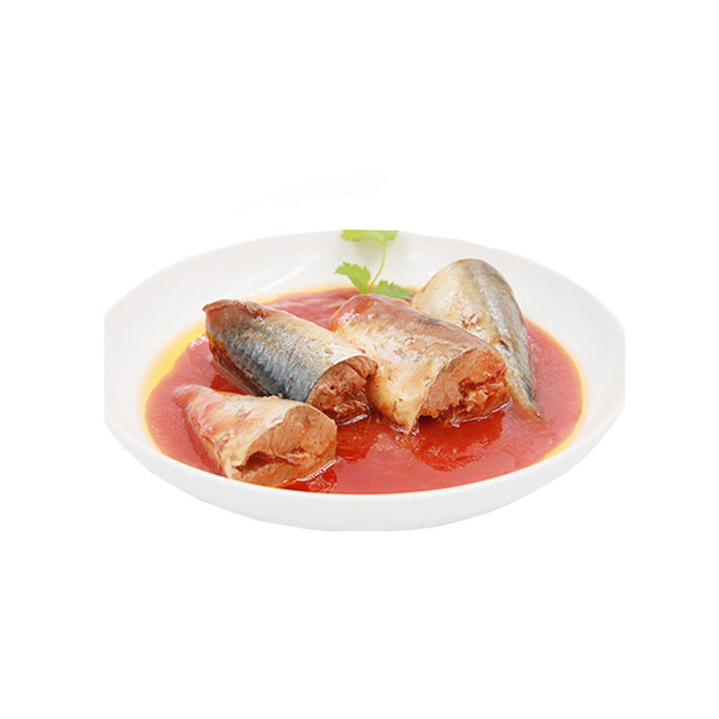 Canned mackerel fish in tomato sauce top quality