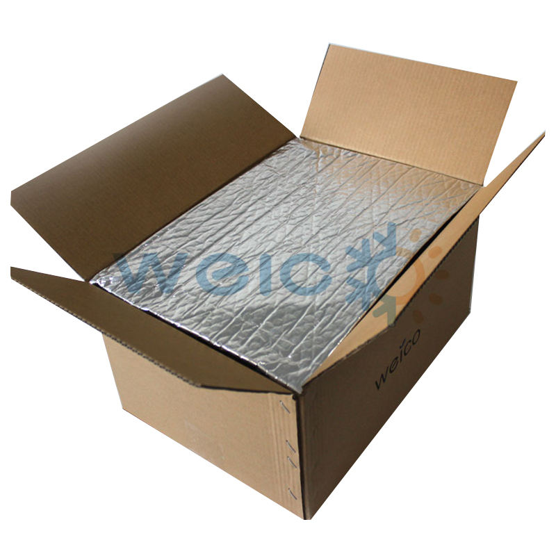 Cold Food Transport Box Liners, Disposable Thick Thermal Liner bags, Chiller Bag Insulated Box Liners