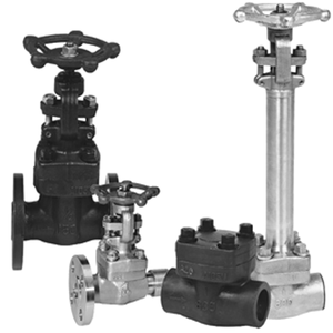 factory outlet DN32DN40DN50 Forged Steel Flanges Gate Valves