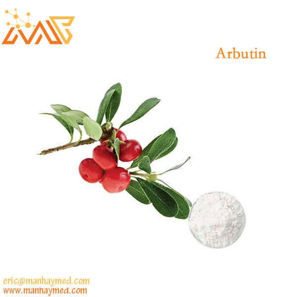 Natural China Factory Wholesale Alpha Arbutin Powder 200g 98% Hot verkauf 497-76-7