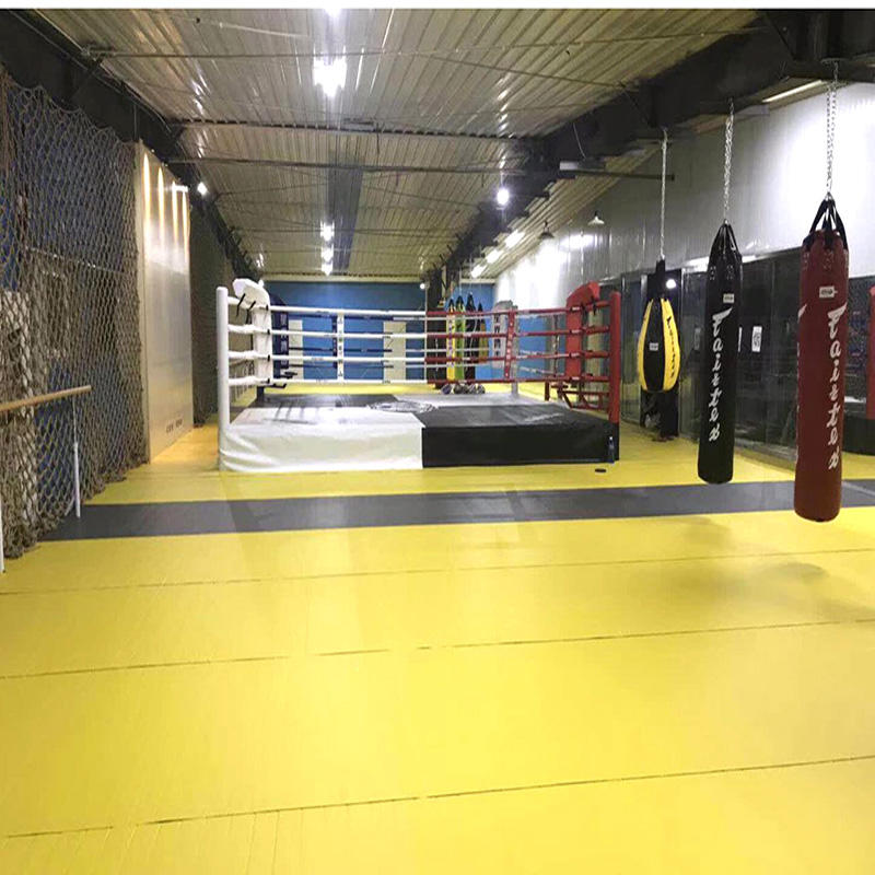 factory Outlet Best-Today Gym equipment pvc strap roll mats custom martial arts bjj mats taekwondo mat