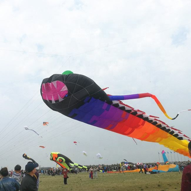 huge inflatable show kite 3d animal shark soft kite from weifang professional kite factory