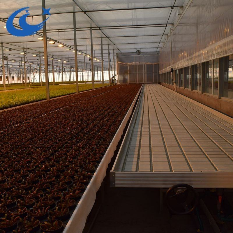 agriculture productive commercial hydroponic fully automated greenhouses