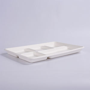 hot sale eco-friendly tray bagasse with food material