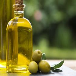 Extra Virgin Organic Olive Oil in Bottle wholesale high quality