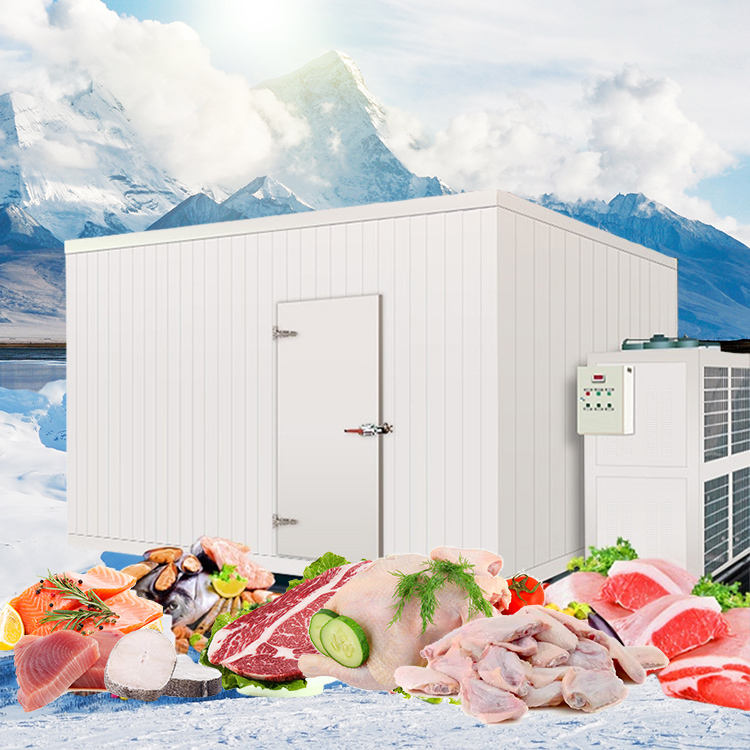 Fish Warehouse Single Phase Room Used Cold Storage