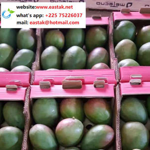 Low price big and sweet mango from Africa (+22575226037)