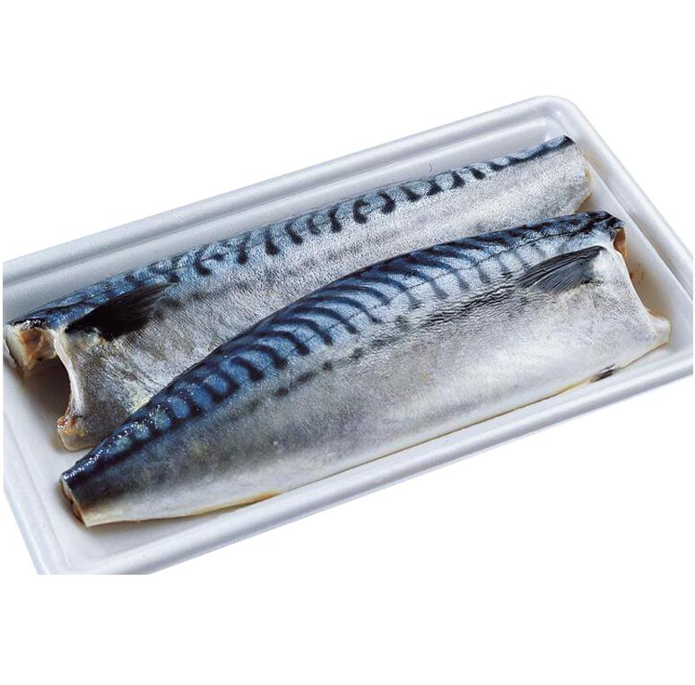 Top Quality Sea Fish filé de cavala Do Pacífico Congelados Scomber Scombrus À Venda