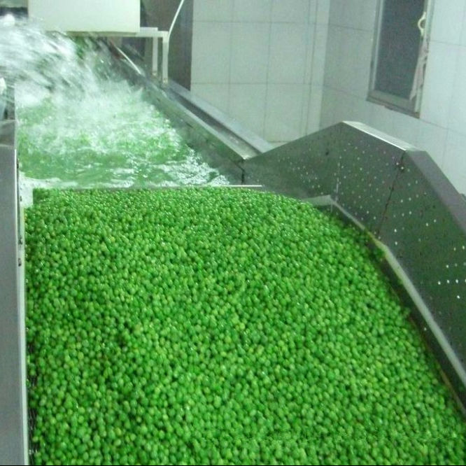 High Quality BRC certified IQF frozen green peas hot sale