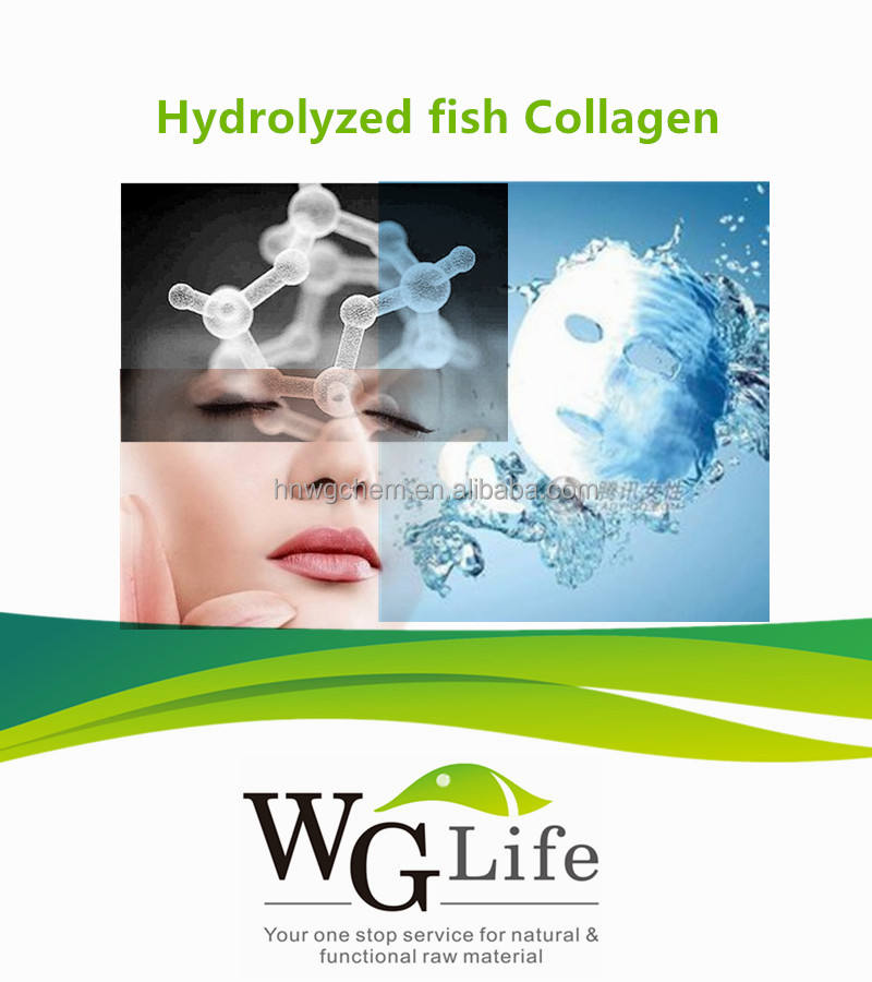 100%加水分解フィッシュコラーゲンcas 9064-67-9でバルク化粧品成分