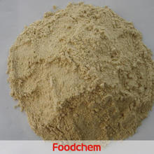 China Dried Vital Wheat Gluten Flour