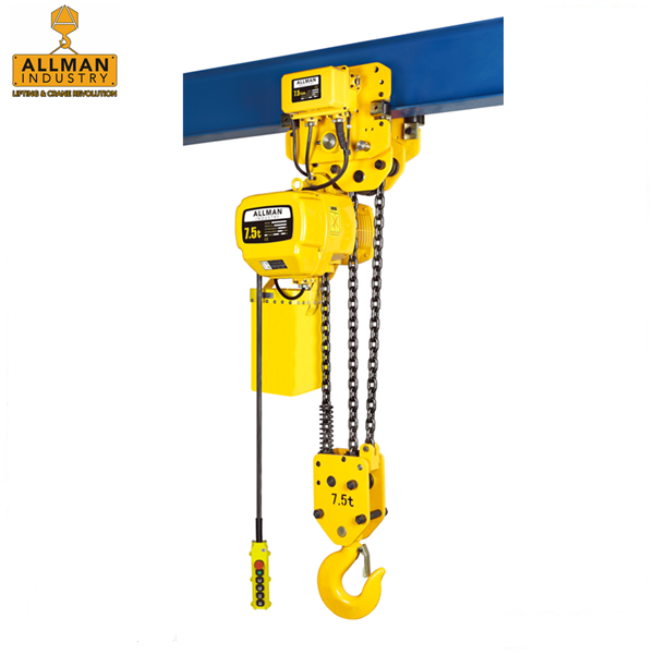 China gold supplier ALLMAN FEC Japan loading chain electric lifting monorail hoist(0.5t to 10ton capacity )