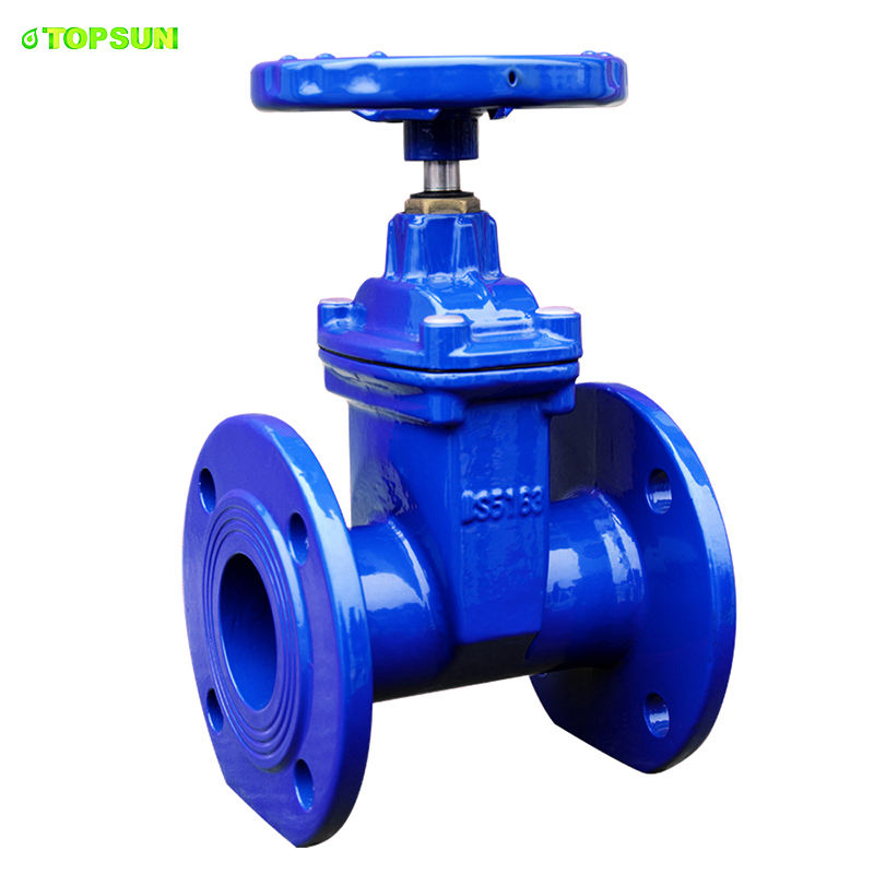 easy ordering Soft Seal dci gate valve Drilling To Iso 7005 Din2501 DN50 Dt pressure rating
