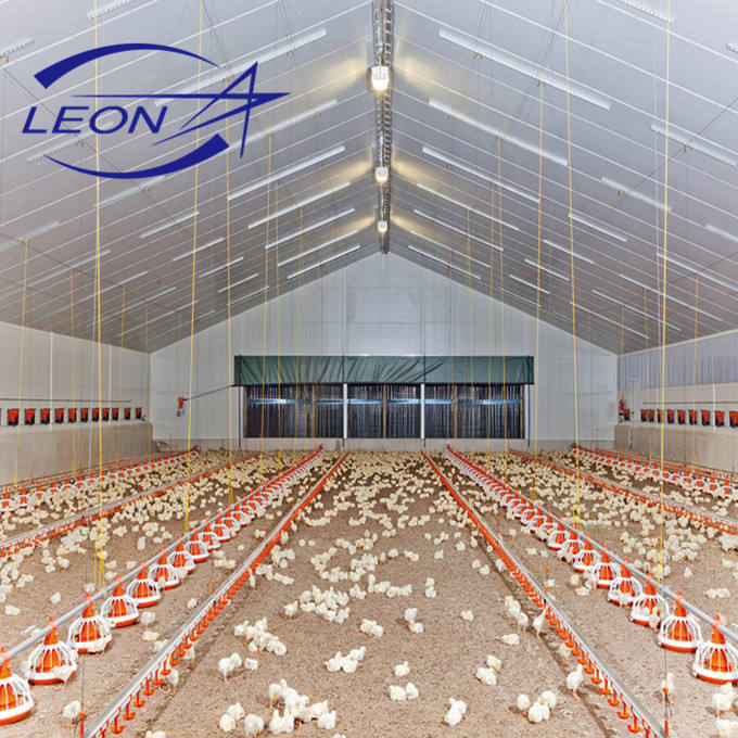 Leon Series Automatic poultry farming livestock equipment for chicken house