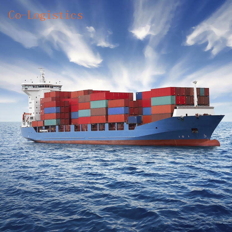 Container Shipping Agent Sea Freight From China to Canada