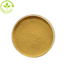 Grifola Frondosa Extract Maitake Beta D Glucan Powder For Maitake Capsule