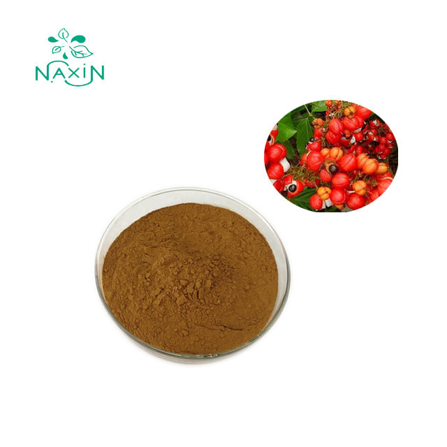 Premium Products Natural Guarana Seed Extract Powder