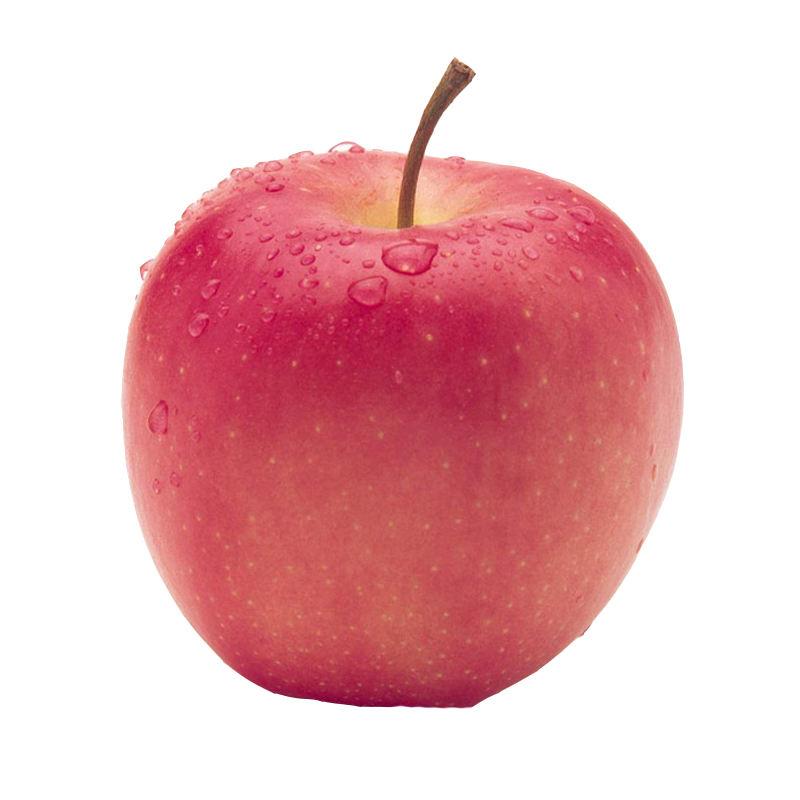 Vente en gros nouvelle pomme étoile rouge