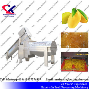 Stainless Steel Mango Seed Removing Machine/Mango Juice Processing Machine 3000KG/H