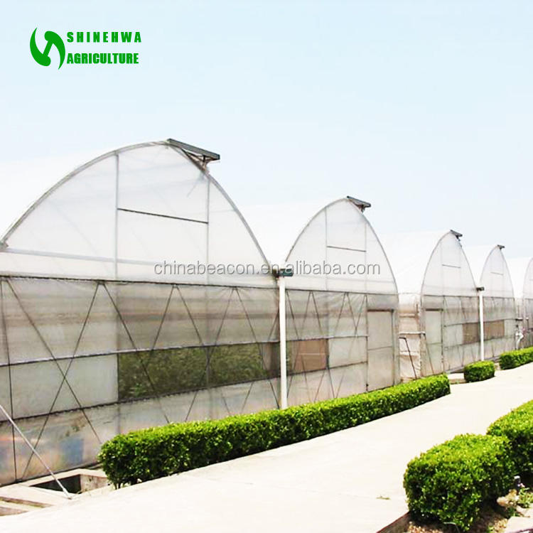 China Supplier Multi-span Plastic Film Agriculture Greenhouses For Sale