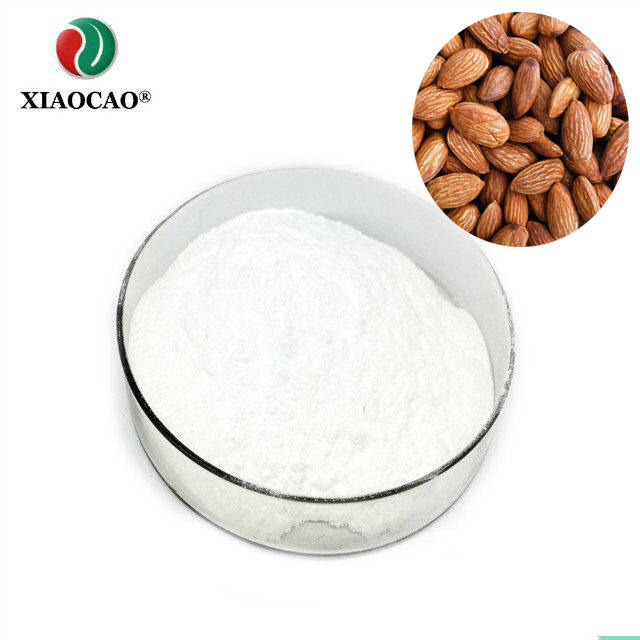 Top Quality and Best Price apricot kernel powder/bitter apricot kernel extract powder