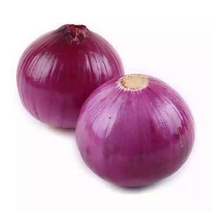 China fresh exporters prices ton red onion for onion importers wholesale