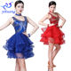 New Style Embroidery Beading Sequin Dance Performance Dress for Latin / Ballroom /Tango /Salsa Party Costumes with Necklace