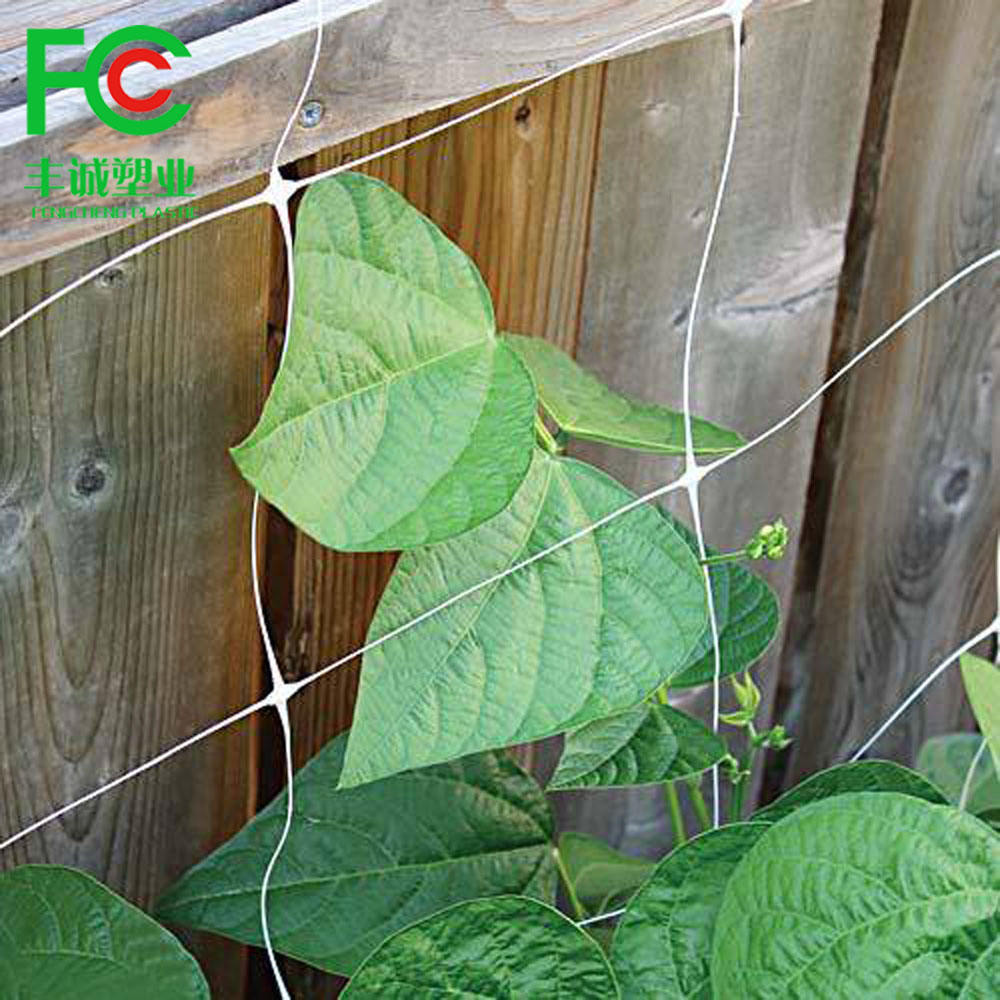China Factory Supply Trellis Netting Plastic Wire Mesh Climbing Plants Supporting Net Plant Support Net